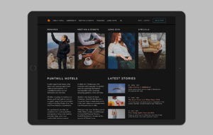 Punthill website design - homepage mockup 02